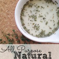 All Purpose Natural Kitchen Scrub
