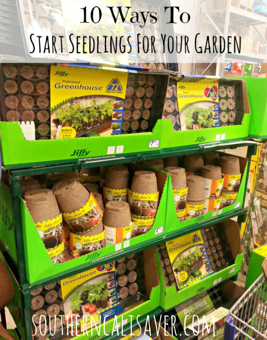 10 Ways to start seedlings for your garden
