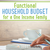 Functional Household Budget for a One Income Family